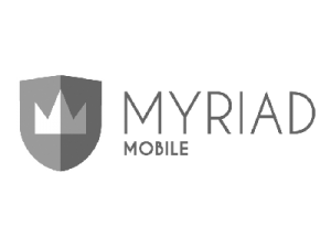 myriad - 400x300 grayscale