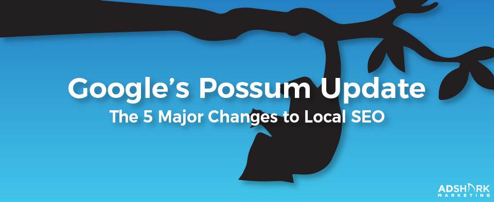 """A blue background graphic with a possum hanging from a tree with the text caption , """"Google's Possum Update- The 5 Major Changes to Local SEO."""""""