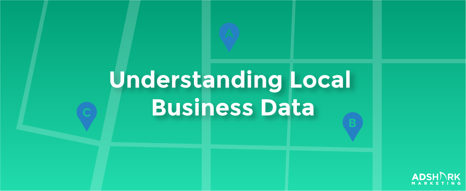 """A green graphic with the text, """"Understanding Local Business Data."""""""